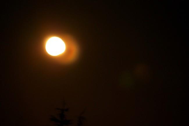 Lune 13742
