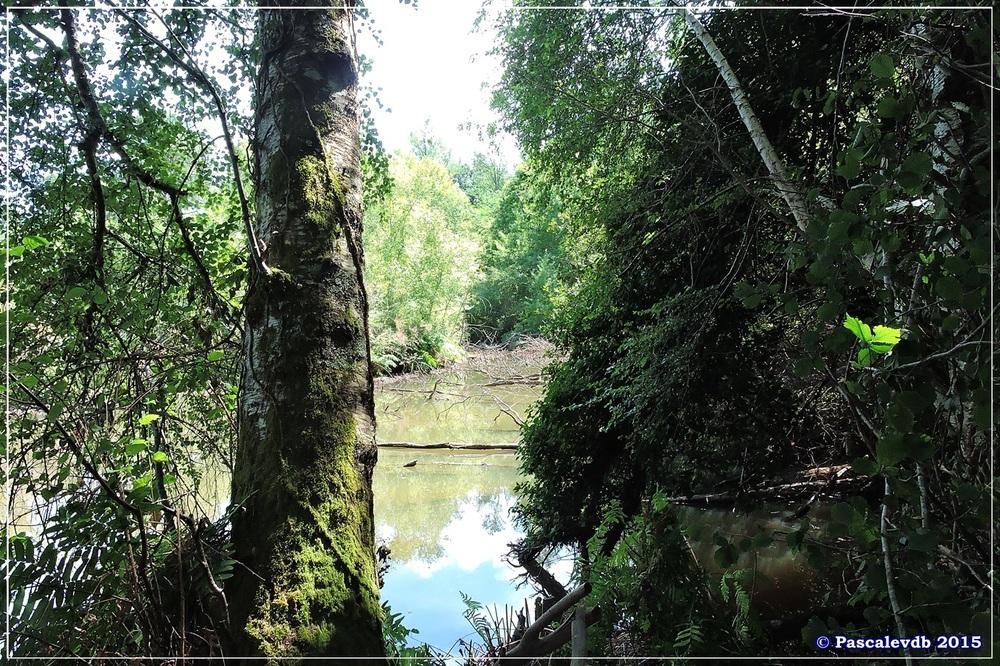 Nouvelle balade au lac du Bousquey - Juillet 2015 - 1/7