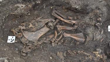 Tombes vikings découvertes en Suède ...