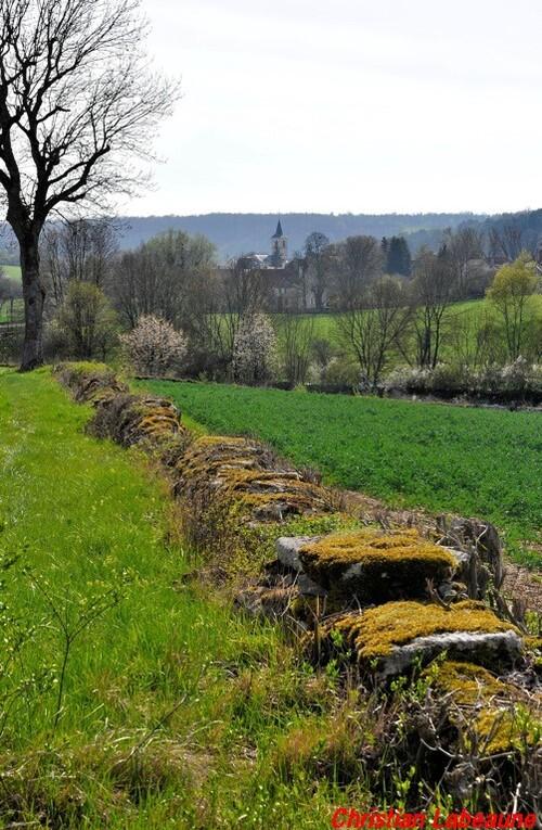 -La rencontre des Châtillon de France et d'ailleurs
