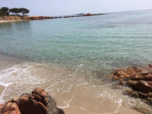 Petites balades bord de mer
