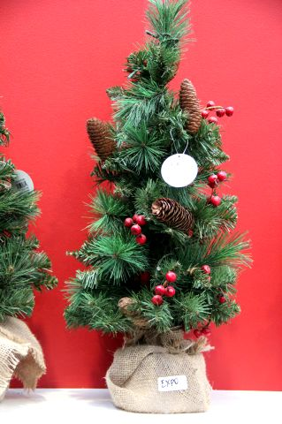 C'est Noël à Famiflora !