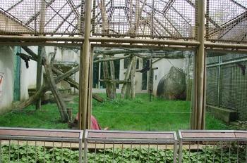 Zoo Osnabruck d50 2012 131