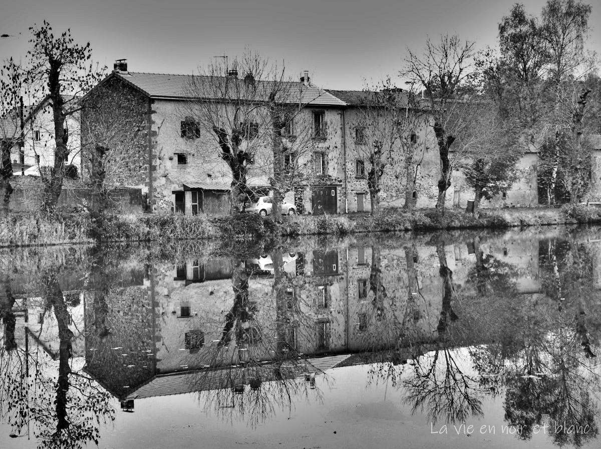 Reflets dans l'étang de Bromont- Lamothe (suite)