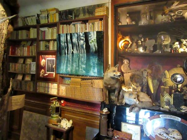 Pierre Ansault expose ses belles toiles chez son fils Fabien, au cabinet de curiosités des Z'un possible