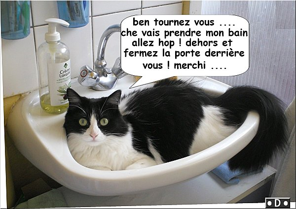 lavabo1.jpg