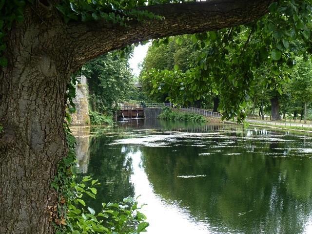 Plan d'eau de Metz - 12