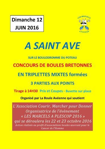 Concours de Boules - St Avé - Dimanche 12 juin 2016