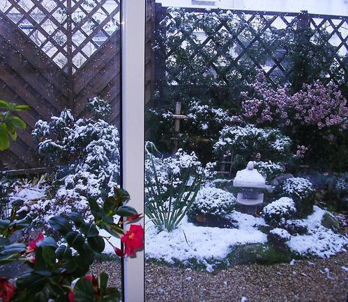 Jardin-japonais-sous-la-neige-11-05.jpg