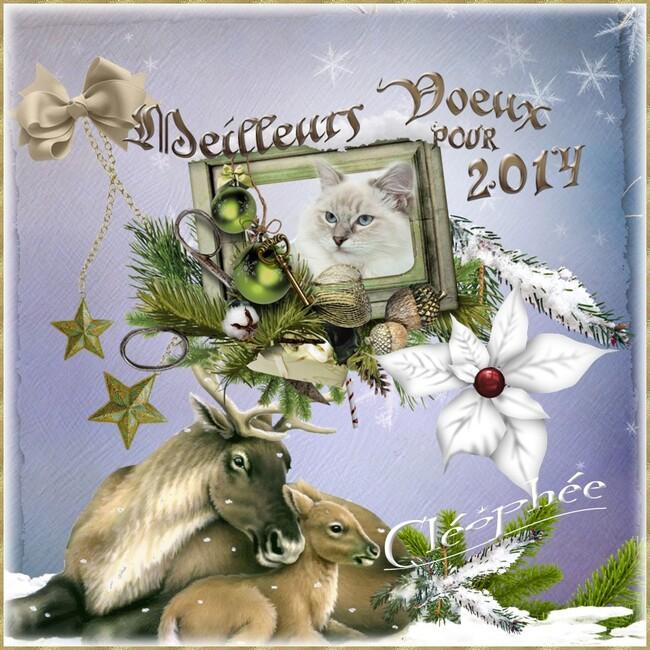 Bonne et heureuse année 2014