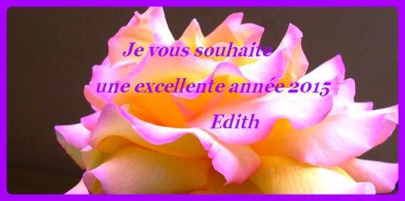 VOEUX 2015 EDITHB