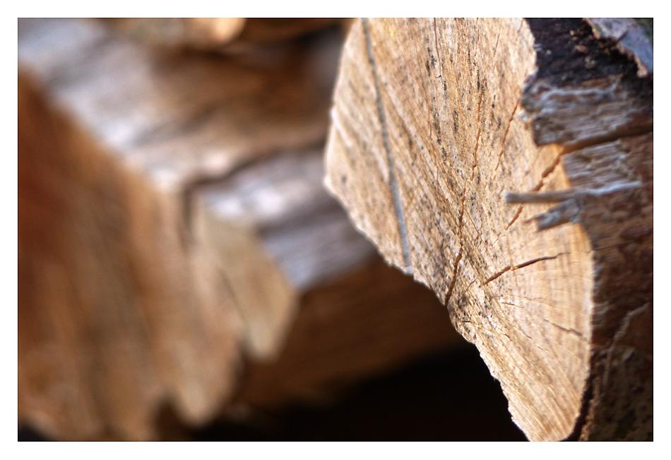Touchons du bois ...