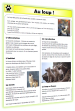 Documentaires animaliers