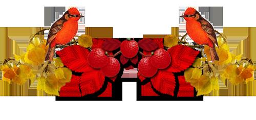 Barre-fruits-feuiles-automne-2-oiseaux-rouge-TB-3eab4233.jp.png