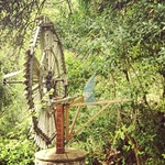 Jardin du Monastère de Lluc