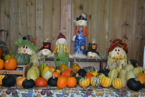Halloween à Chicoutimi