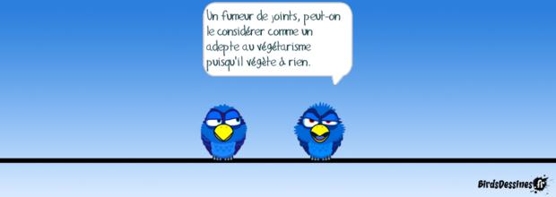 ♥St Valentin des oiseaux♥