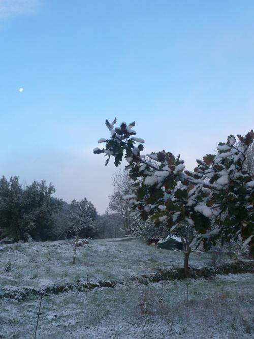 Premières chutes de neige de la saison