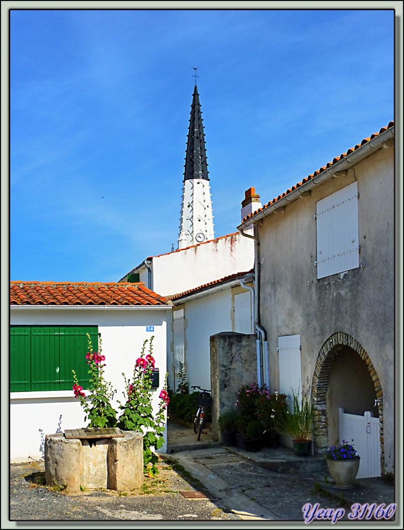Le puits, les roses trémières et le clocher (Traitement HDR très léger) - Ars-en-Ré - Ile de Ré - 17