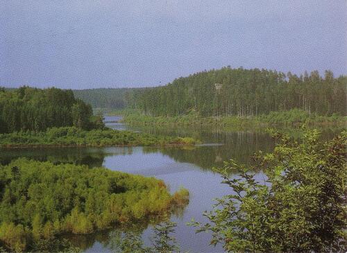 lac du vieux pré celles sur plaine