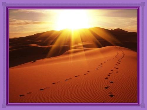 Rencontre décisive dans le désert 1 et 2