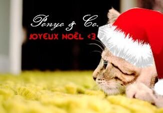 Joyeux Noël !!