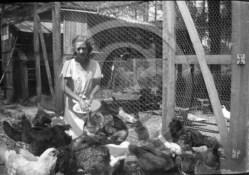 04 - Les poules et les dames