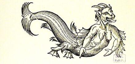 Illustration du livre d'Ambroise Paré : Le léviathan
