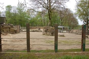 Zoo Osnabruck d50 2012 203