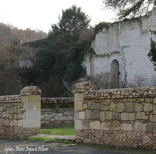 Anjou - 4