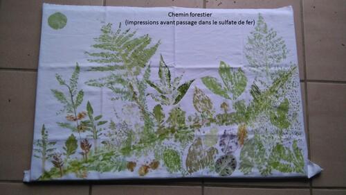 Impressions végétales # 1