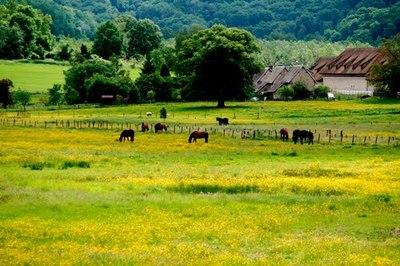 Blog de lisezmoi :Hello! Bienvenue sur mon blog!, L'Aisne - Margival