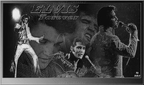 ELVIS 008