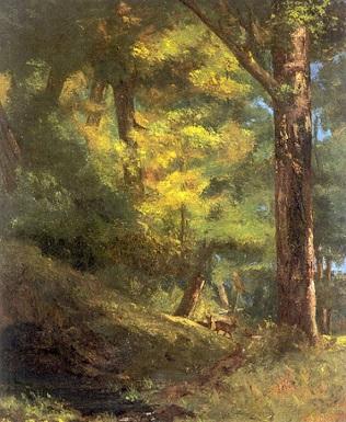 Les forêts ...