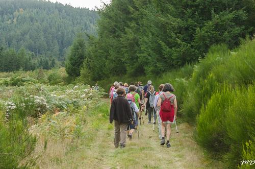 Randonnée les Panoramas d'Echandélys.14 kms..27.09.2017.Clichés de Martine.Roland et Jacques