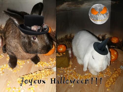 Kajika et Rita qui fêtent Halloween 2014