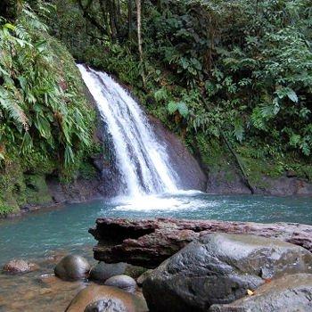la cascade aux ecrevisses est un des sites les plus célèbres de guadeloupe.