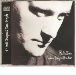 Another Day in Paradise (Phil Collins)