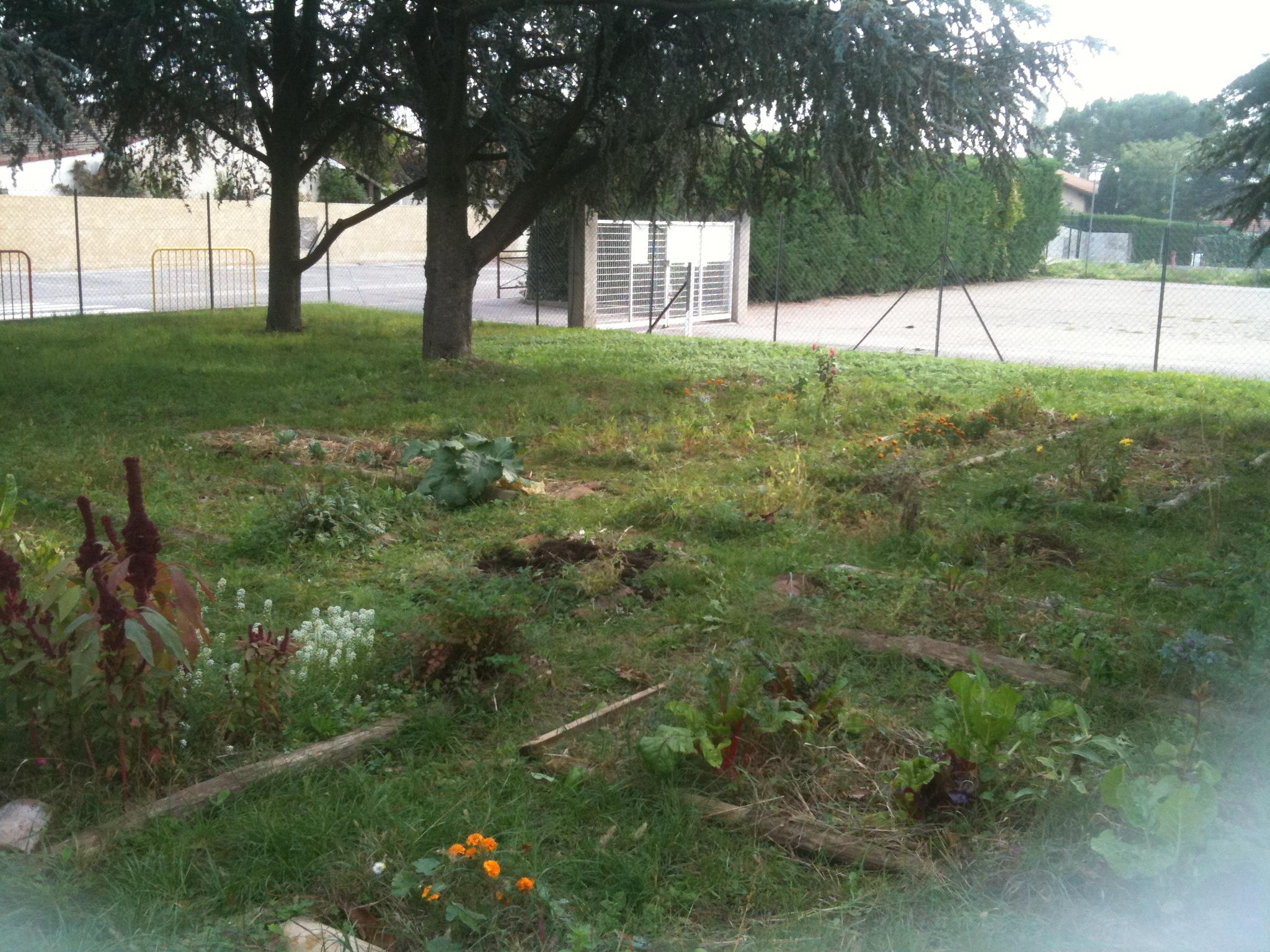 Célèbre Projet jardin à l'école - ☆Meroute en clis☆ UD81
