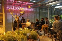 Le bar à plantes médicinales de la cité des sciences