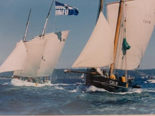 Les plus beaux voiliers- vieux gréments -course au large- de Hambourg à Hobart et ailleurs ..........