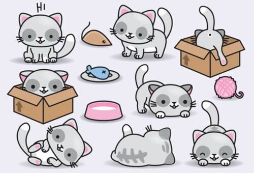 Cats types fantaisies