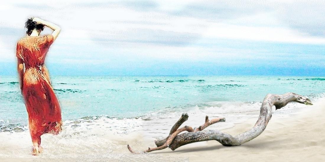 Grands fonds thème la mer, Bois flotté