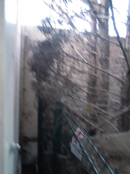 photo 1786-web