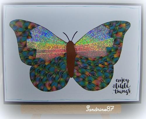 papillon en iris folding