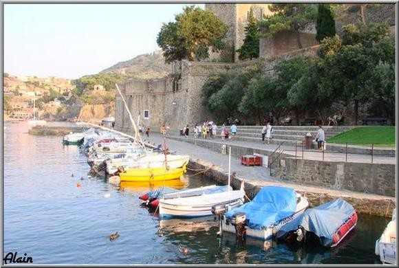 Collioure_Aout07_271