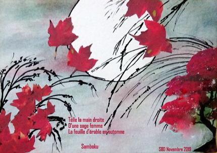 Les haikus de Novembre