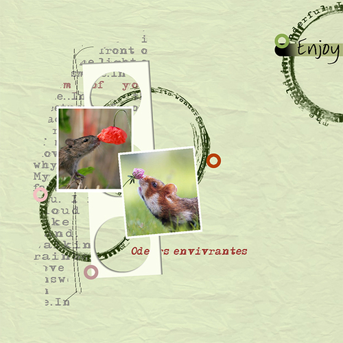 Scrap C&S avec Photoshop -2-