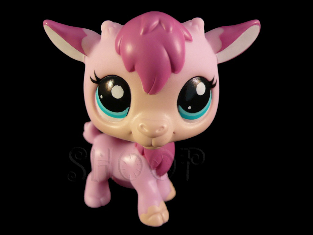 LPS 2533