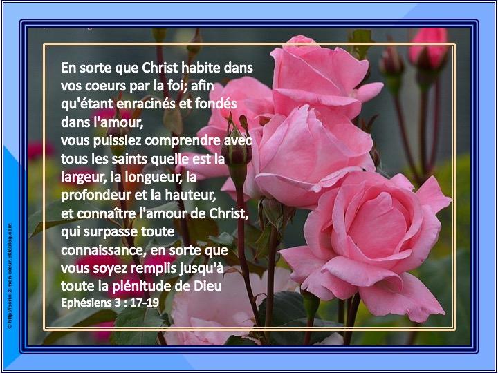 En sorte que Christ habite dans vos coeurs - Ephésiens 3 : 17- 19